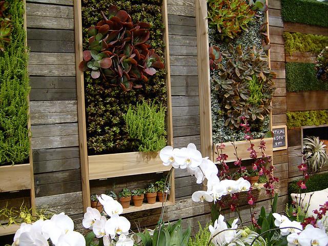 grades madeira jardim:Natureza nas paredes